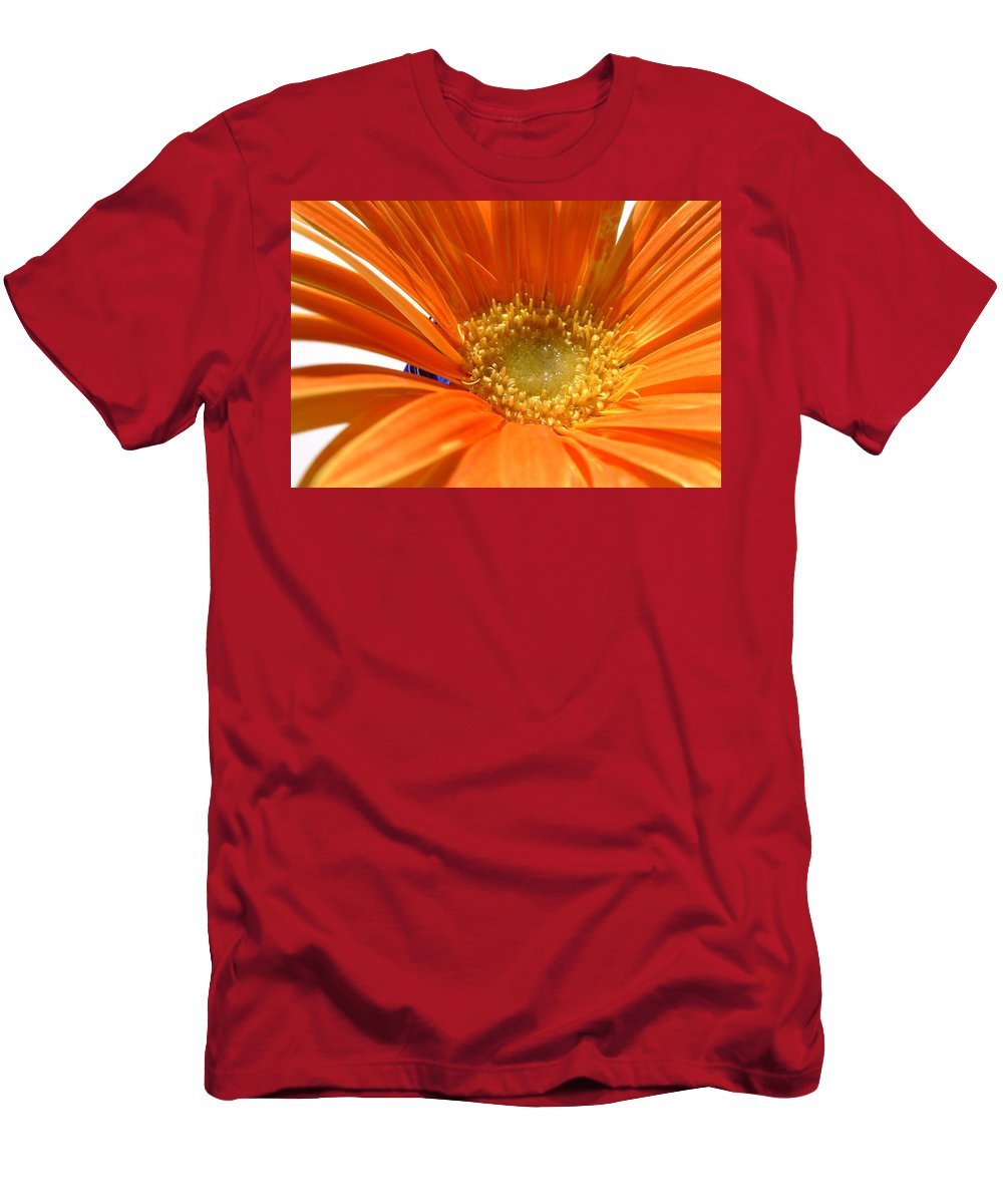 Gerbera Photographs Men's T-Shirt (Athletic Fit) featuring the photograph 2106zc-002 by Kimberlie Gerner