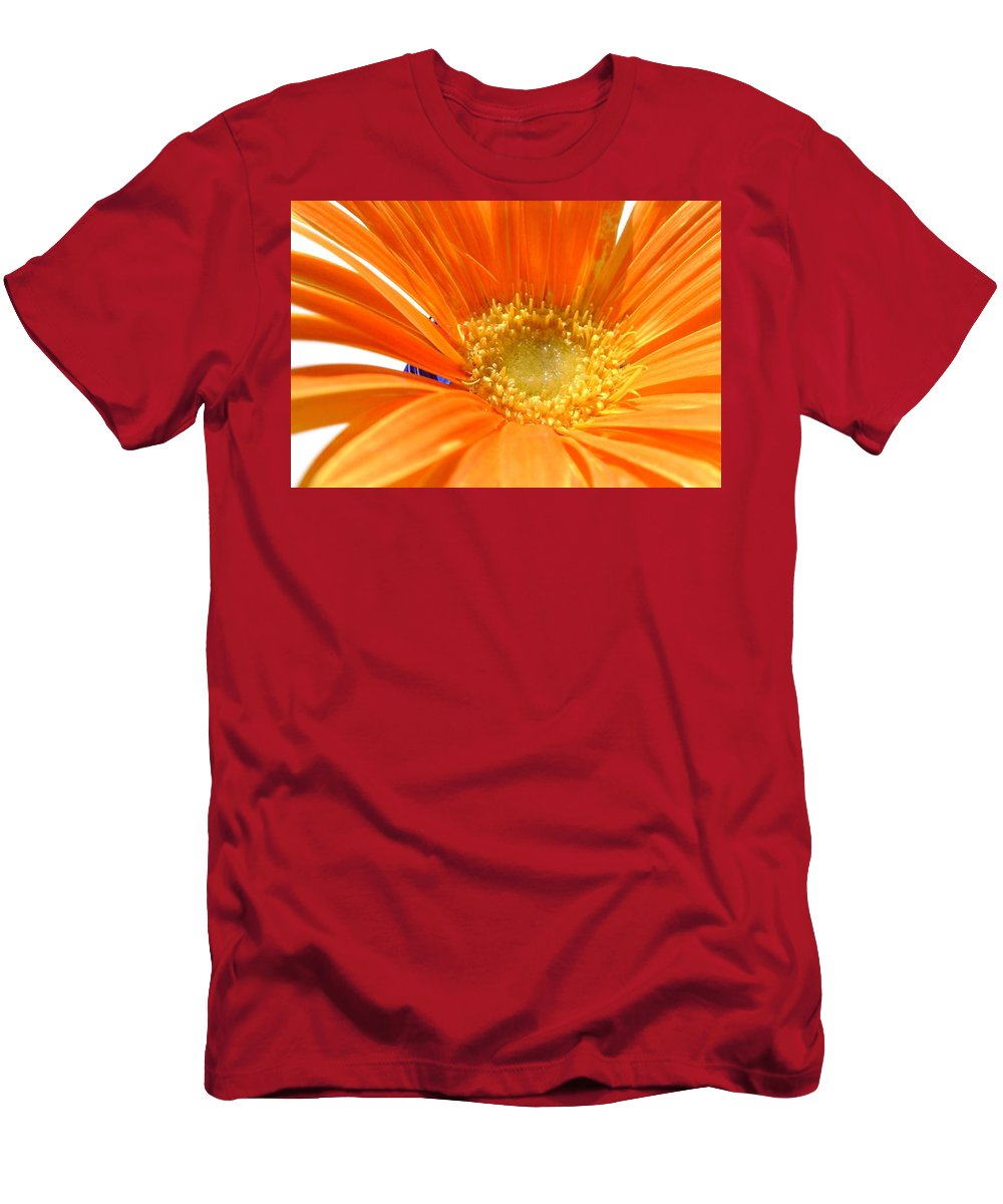 Gerbera Photographs Men's T-Shirt (Athletic Fit) featuring the photograph 2106zc-005 by Kimberlie Gerner