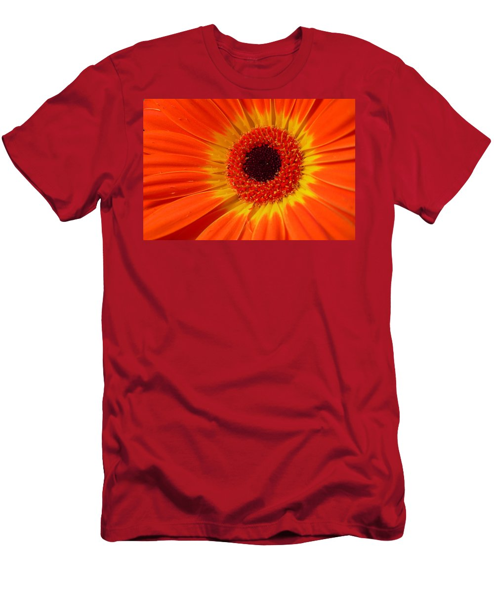 Gerbera Photographs Men's T-Shirt (Athletic Fit) featuring the photograph 3436-002 by Kimberlie Gerner