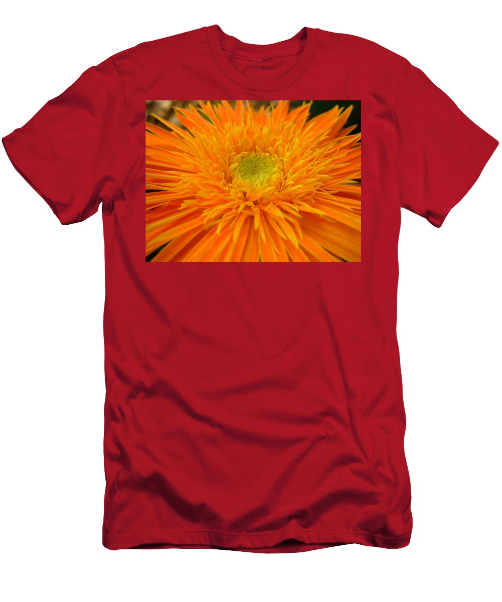 Gerbera Photographs Men's T-Shirt (Athletic Fit) featuring the photograph 5998 by Kimberlie Gerner