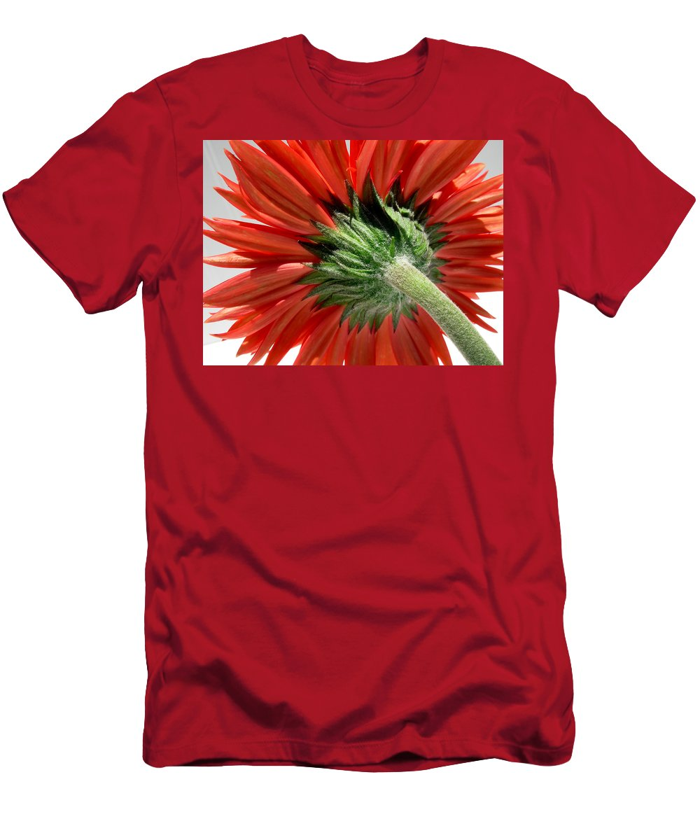 Gerbera Photographs Men's T-Shirt (Athletic Fit) featuring the photograph 6413 by Kimberlie Gerner