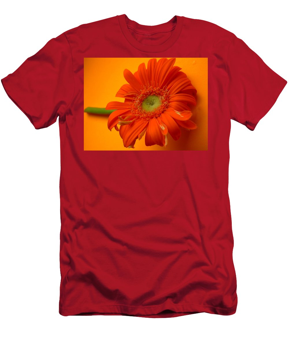 Gerbera Photographs Men's T-Shirt (Athletic Fit) featuring the photograph 7335 by Kimberlie Gerner