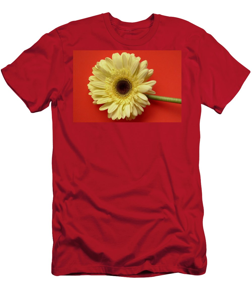 Gerbera Photographs Men's T-Shirt (Athletic Fit) featuring the photograph 7709-001 by Kimberlie Gerner