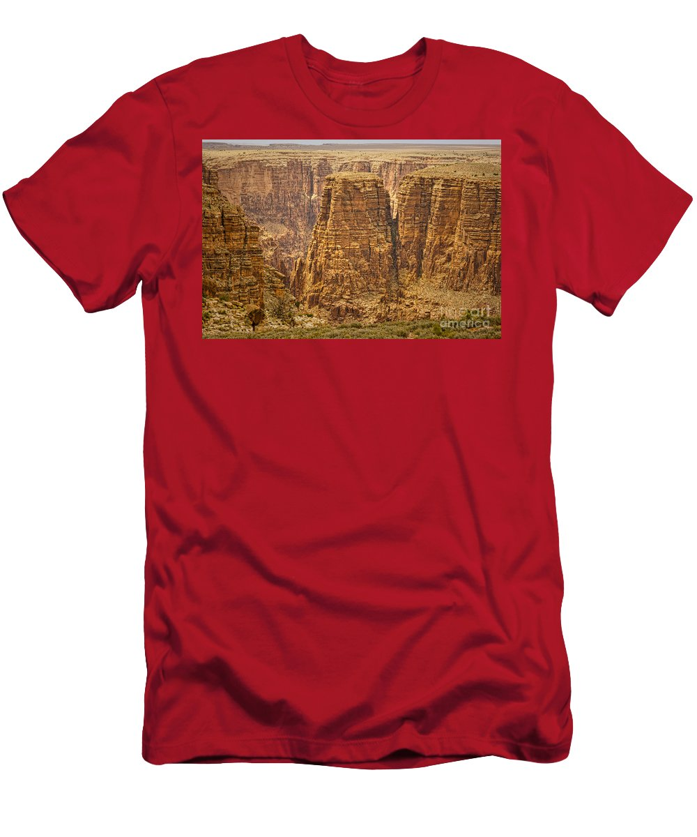 Canyons Men's T-Shirt (Athletic Fit) featuring the photograph Canyons by James BO Insogna