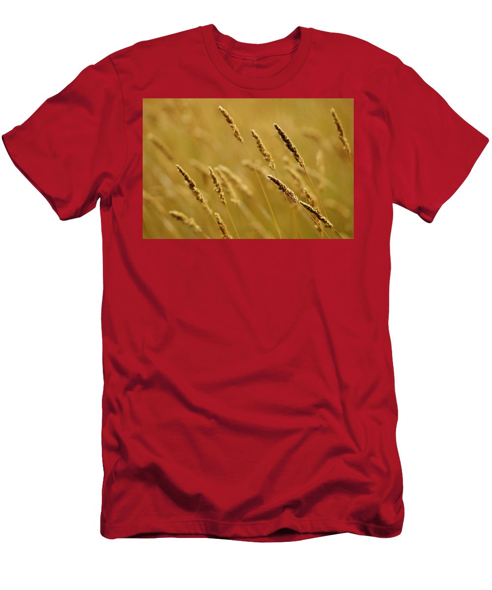 Agriculture Men's T-Shirt (Athletic Fit) featuring the photograph Close-up Of Wheat by Jim Weeks