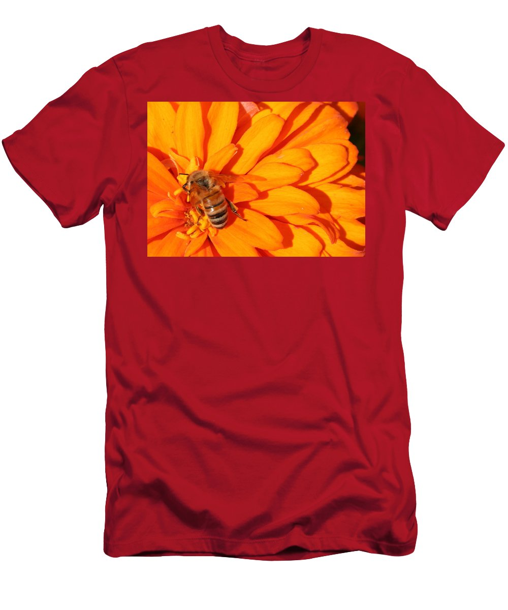 Honeybee Men's T-Shirt (Athletic Fit) featuring the photograph Honeybee On An Orange Zinnia by Laurel Talabere