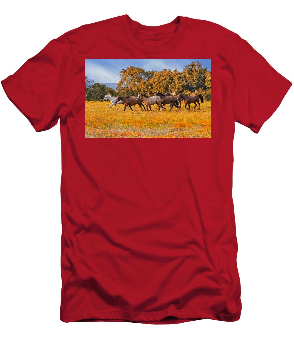 Horse Men's T-Shirt (Athletic Fit) featuring the photograph Horses Running Free by Susan Candelario