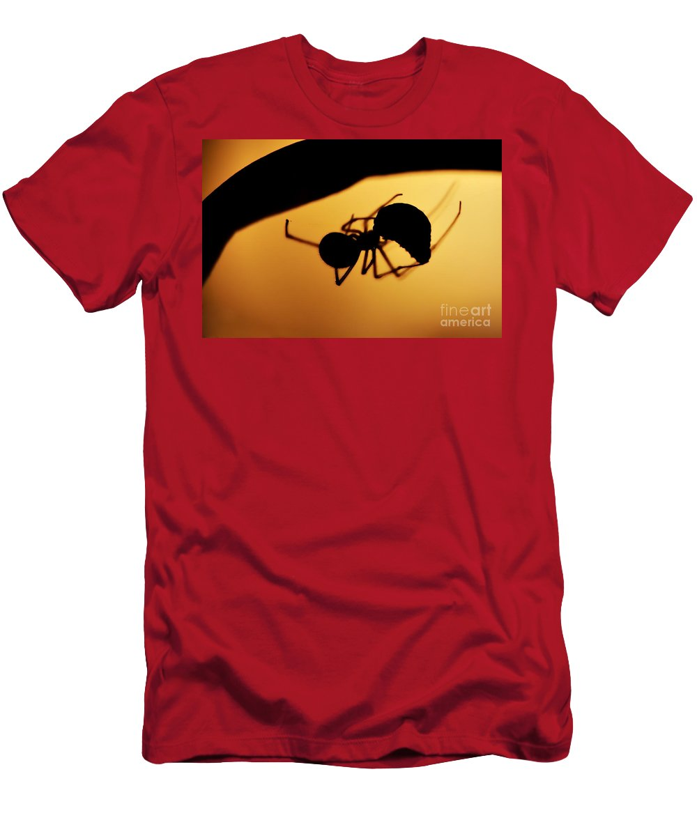 Spider Men's T-Shirt (Athletic Fit) featuring the photograph Hunter by Michal Boubin