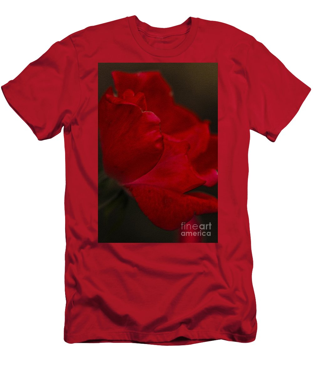 Rose Men's T-Shirt (Athletic Fit) featuring the photograph Kissed by Kim Henderson