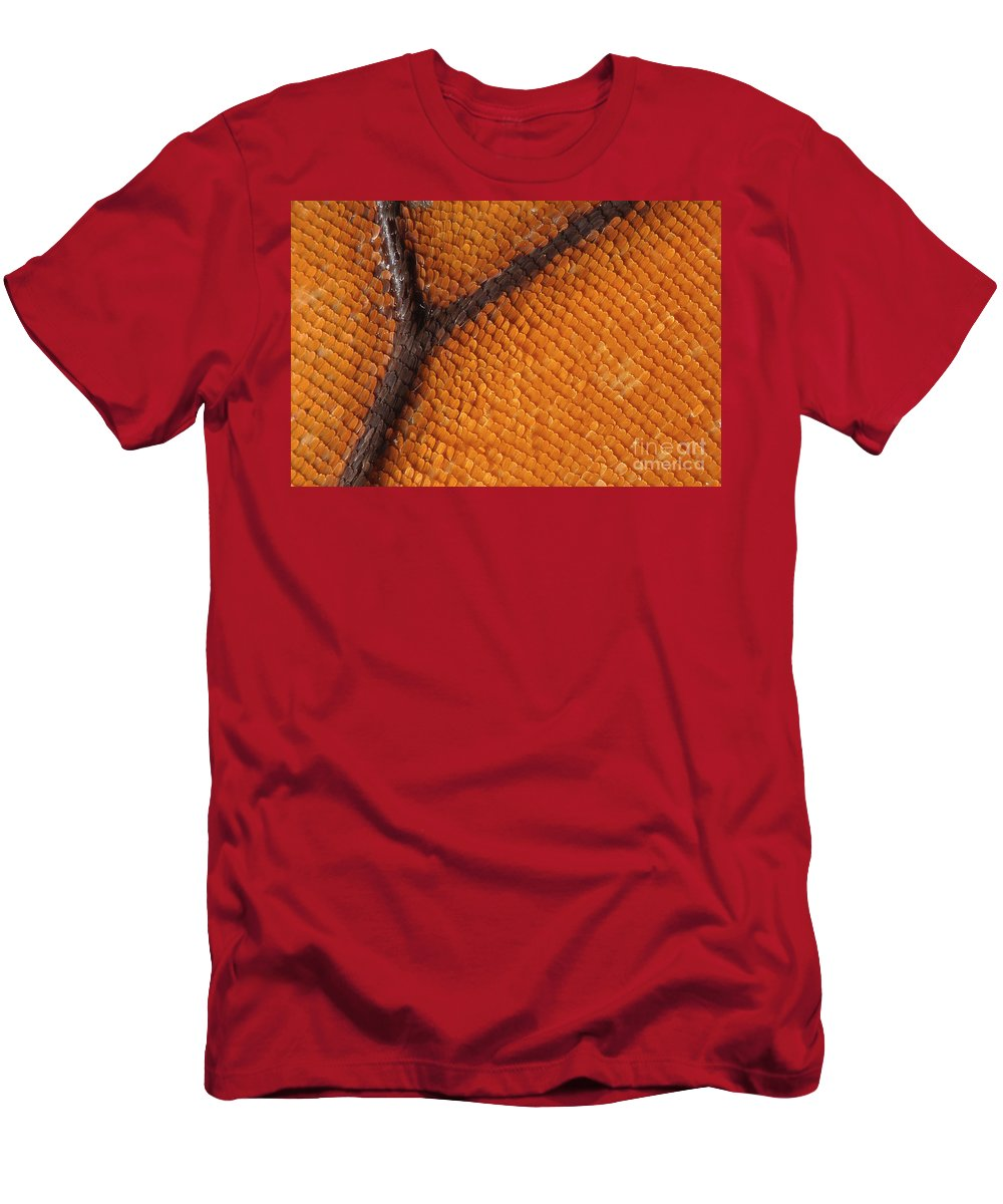 Butterfly Men's T-Shirt (Athletic Fit) featuring the photograph Monarch Butterfly Wing Scales by Raul Gonzalez Perez