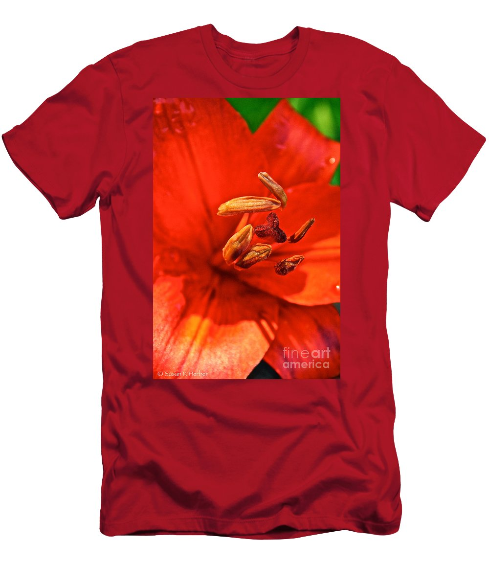 Outdoors Men's T-Shirt (Athletic Fit) featuring the photograph Prime Red by Susan Herber