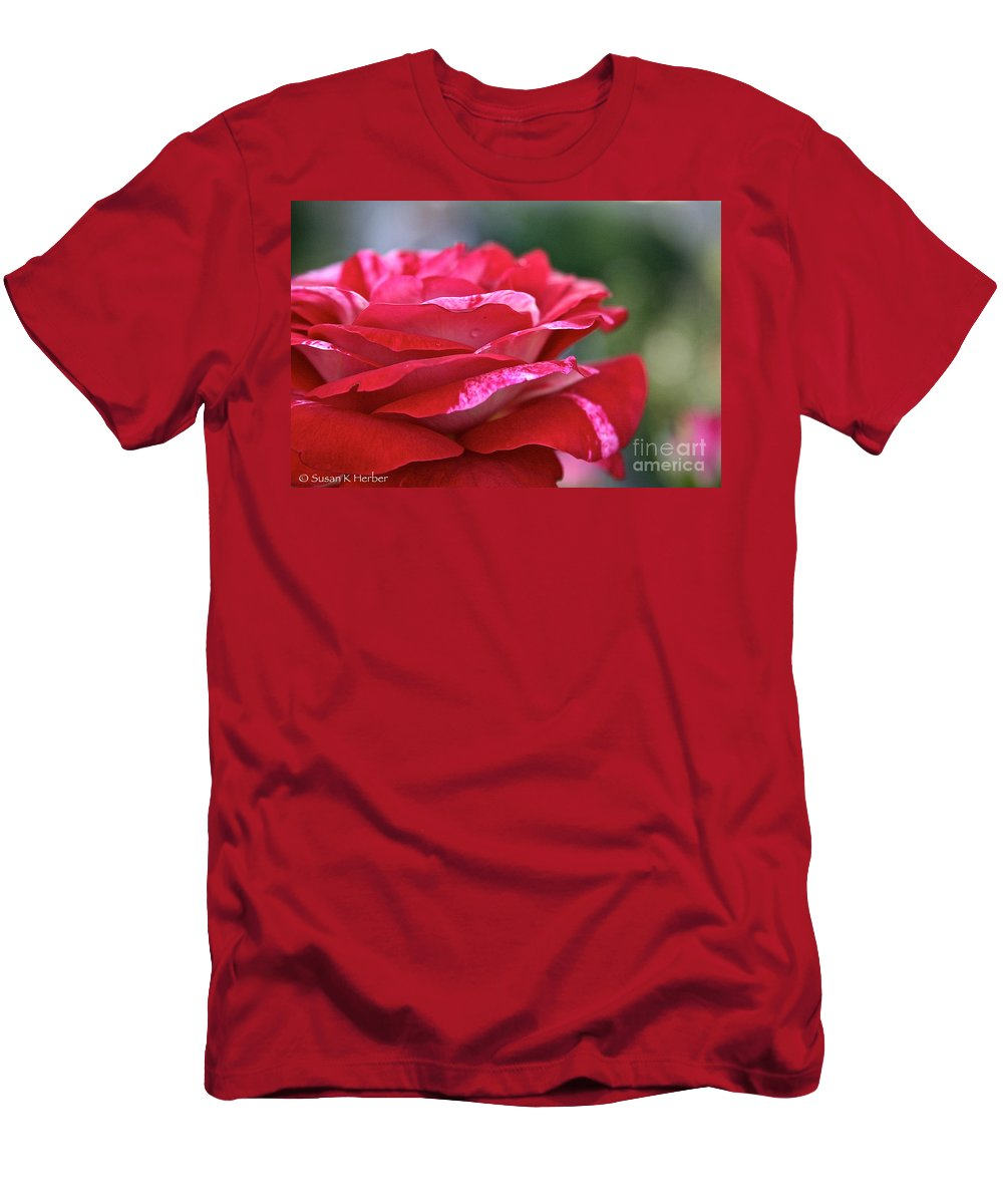 Plant Men's T-Shirt (Athletic Fit) featuring the photograph Rock N Roll Rose by Susan Herber