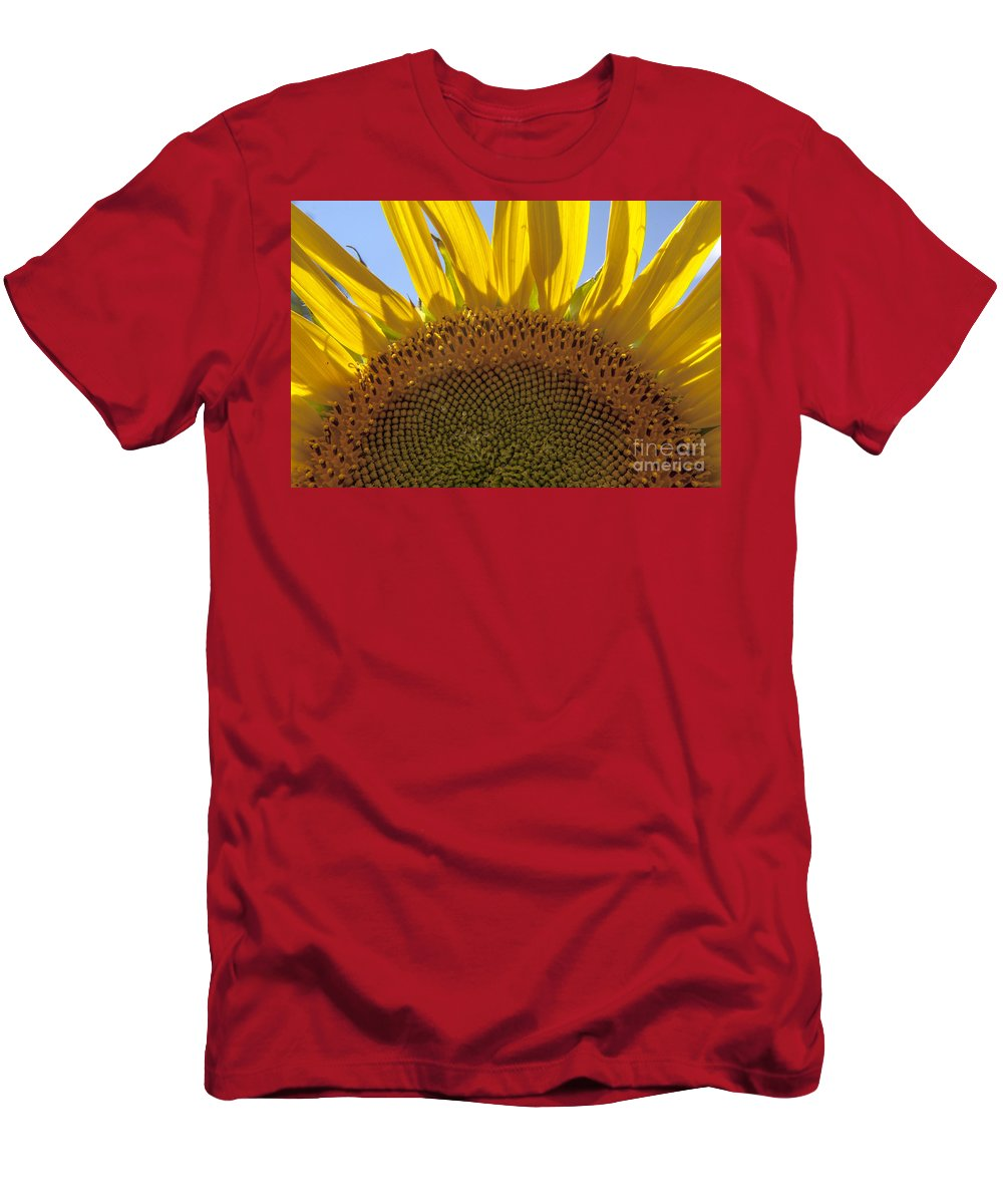 Sunflower Men's T-Shirt (Athletic Fit) featuring the photograph Sunflower Arch by Darleen Stry