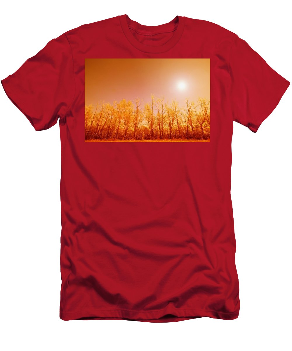 Canada Men's T-Shirt (Athletic Fit) featuring the photograph Trees With Sunlight by Leah Hammond