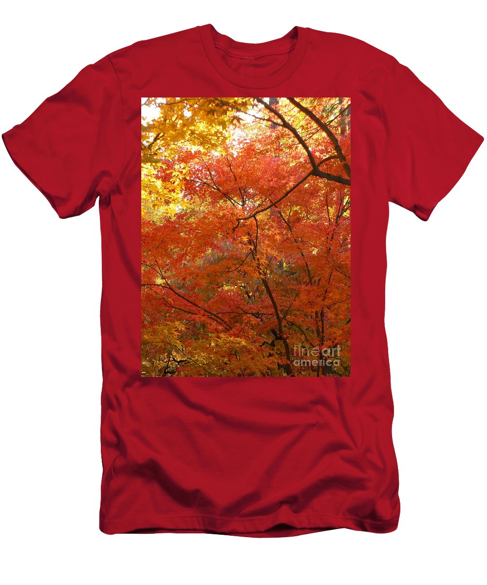 Autumn Men's T-Shirt (Athletic Fit) featuring the photograph Autumn Gold by Carol Groenen
