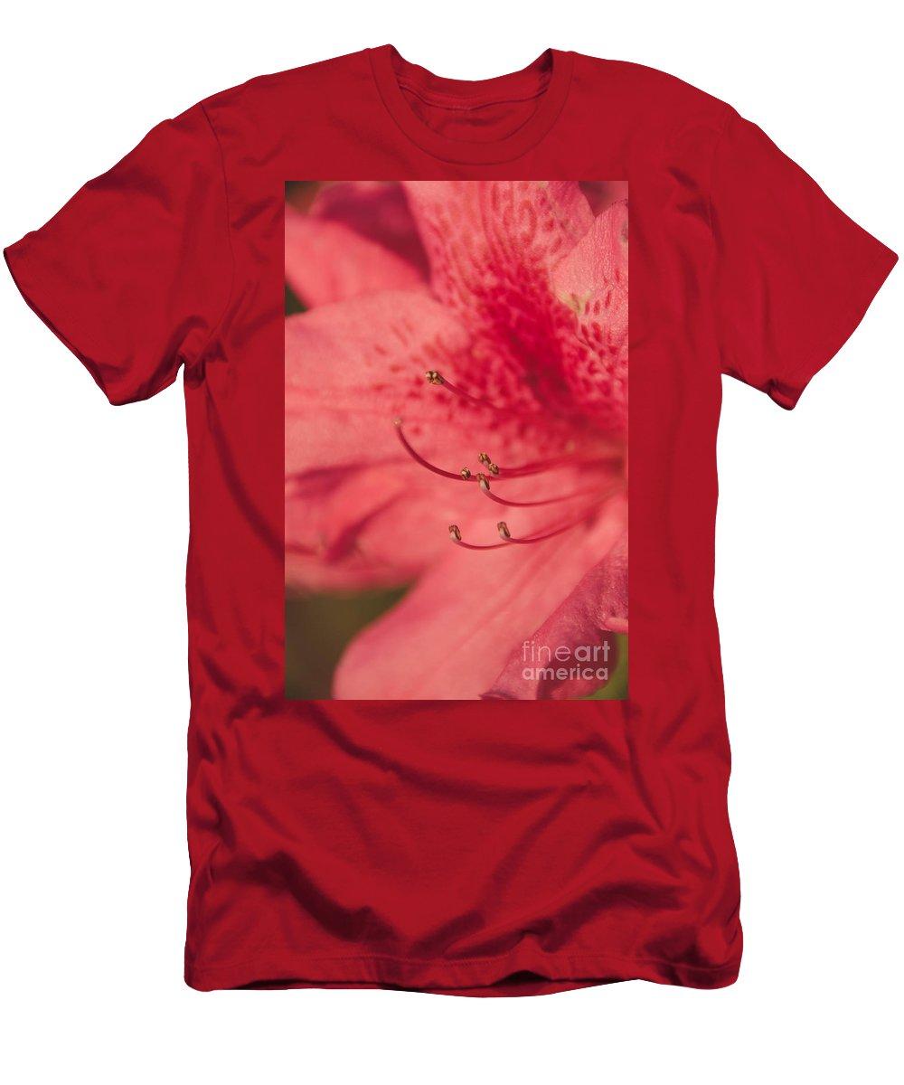 Azalea Men's T-Shirt (Athletic Fit) featuring the photograph Azalea by Andrea Anderegg