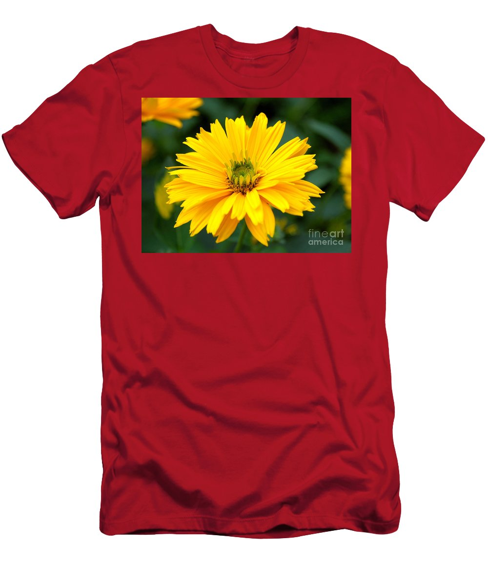 Macro Men's T-Shirt (Athletic Fit) featuring the photograph Sun Flower by Joe Ng