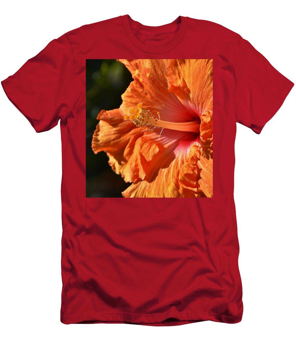 Close Up; Hibiscus; Blossom; Sunlight; Floral; Flower; Garden; Background; Petals; Decorative; Macro; Yellow; Inside; Flora; Bush; Sun; Detail; Orange; Red; Men's T-Shirt (Athletic Fit) featuring the photograph orange Hibiscus blossom by Werner Lehmann