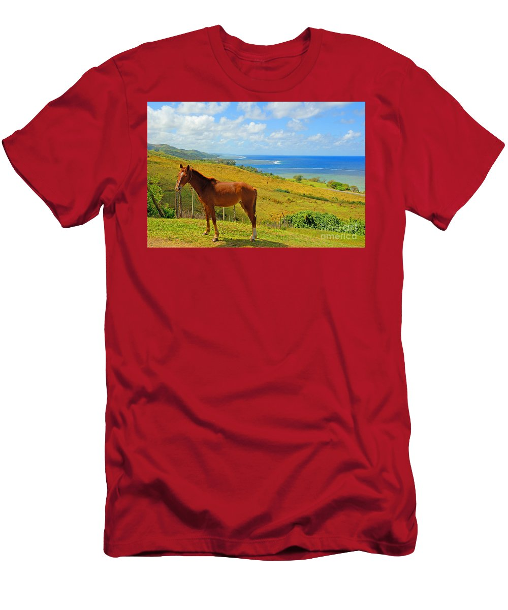 Afternoon Men's T-Shirt (Athletic Fit) featuring the photograph Viti Levu, Coral Coast by Himani - Printscapes