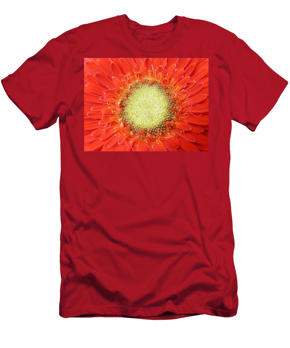 Gerbera Men's T-Shirt (Athletic Fit) featuring the photograph Gerbera by Daniel Csoka
