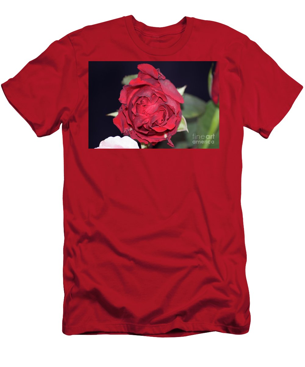 Flowers Men's T-Shirt (Athletic Fit) featuring the photograph Red Rose by Elvira Ladocki