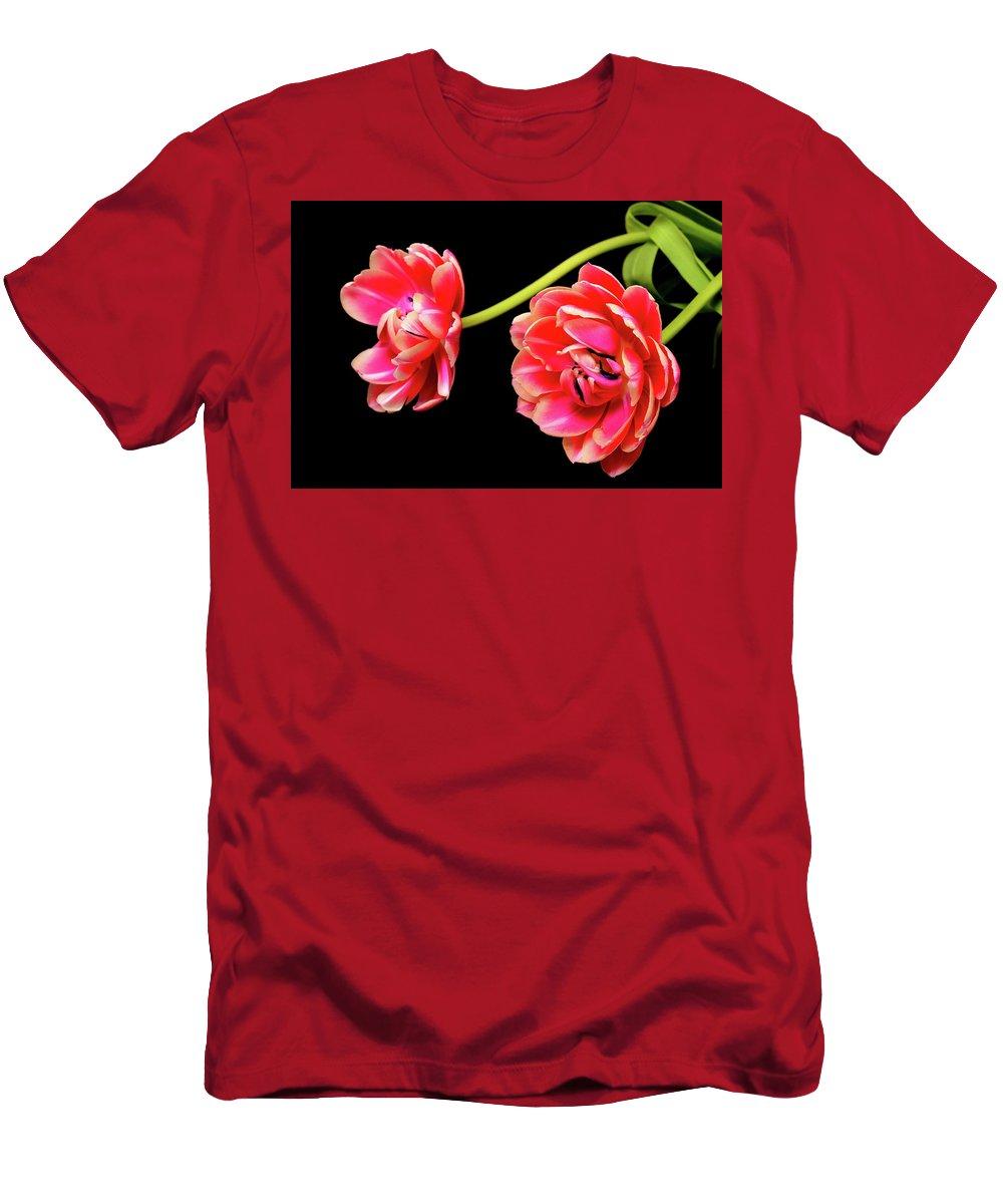 Tulip Men's T-Shirt (Athletic Fit) featuring the photograph Tulip Floral Arrangement by Paul Moore