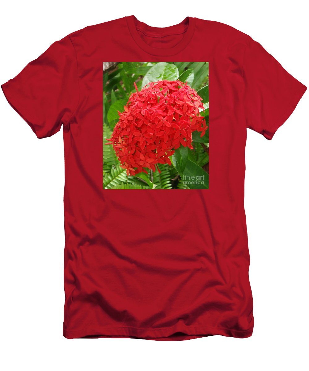 Mary Deal Men's T-Shirt (Athletic Fit) featuring the photograph A Crown Of Ixora by Mary Deal