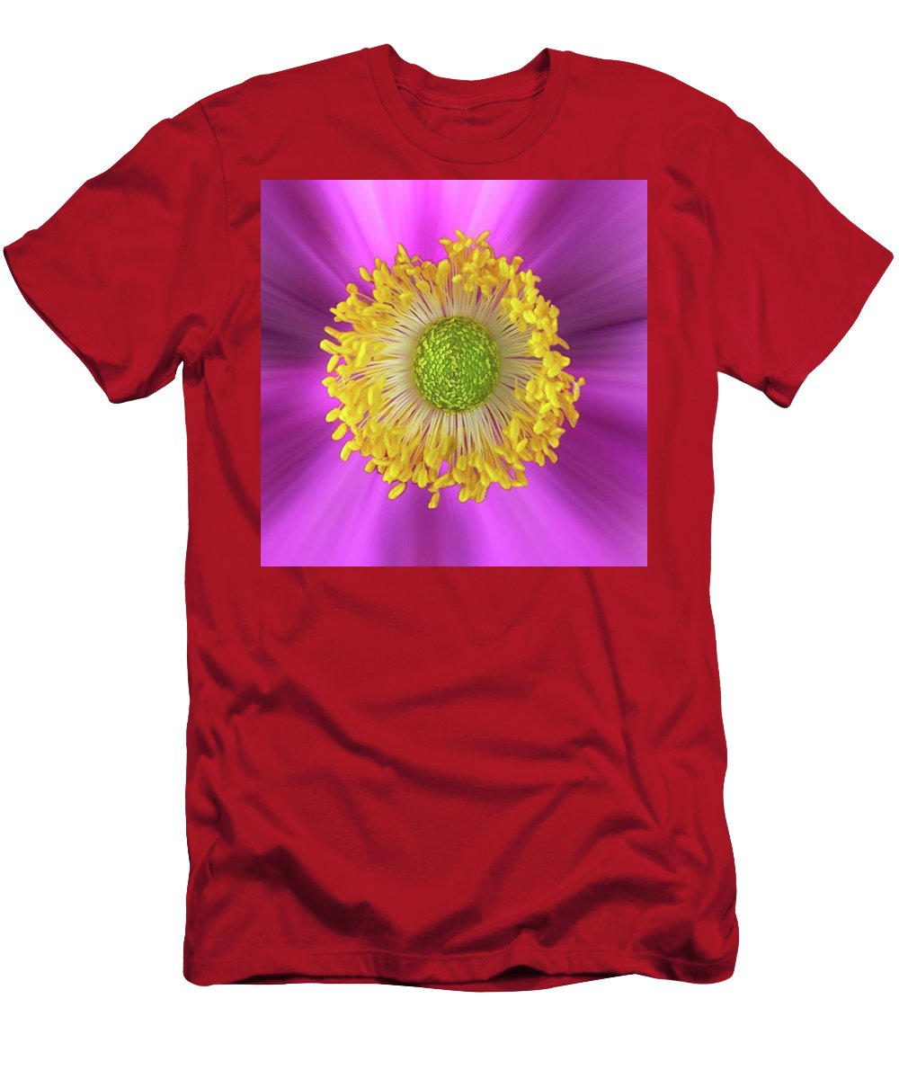 Beautiful T-Shirt featuring the photograph Anemone Hupehensis 'hadspen by John Edwards