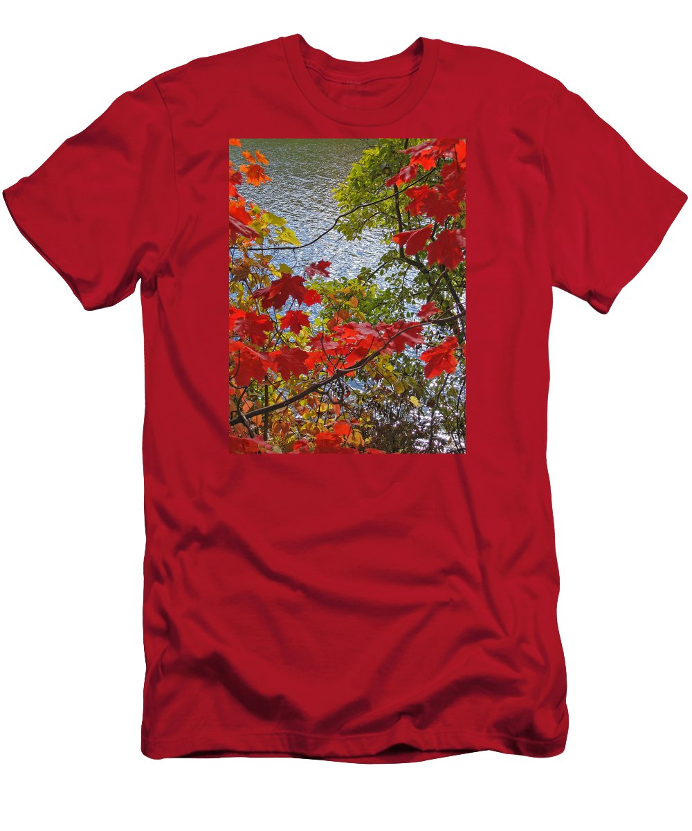 Autumn Men's T-Shirt (Athletic Fit) featuring the photograph Autumn Lake by Ann Horn