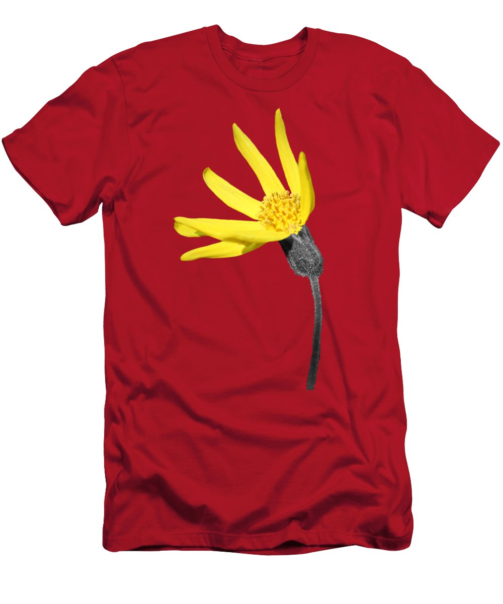 Wildflower Men's T-Shirt (Athletic Fit) featuring the photograph Yellow Wildflower by Shane Bechler