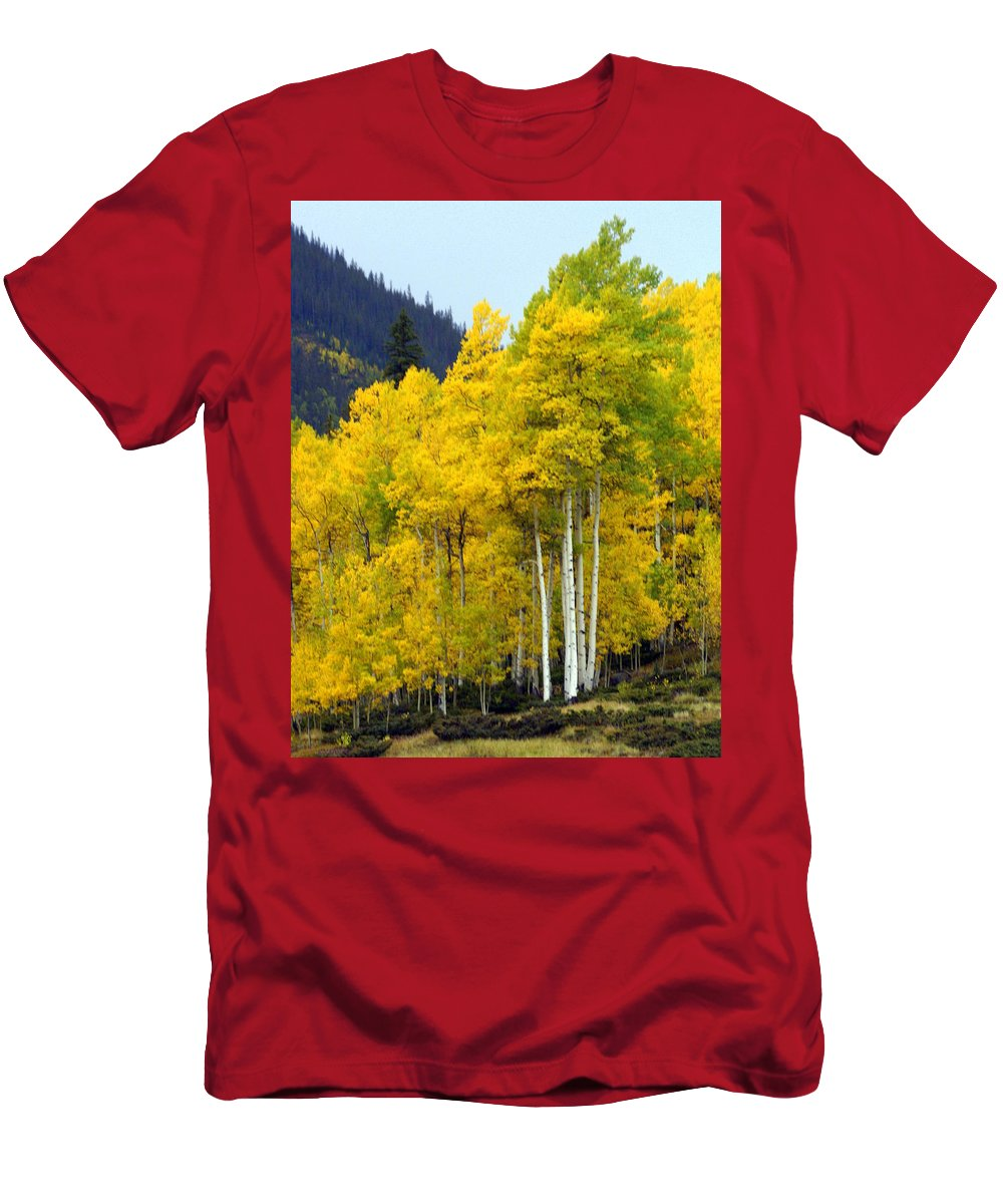 Fall Colors Men's T-Shirt (Athletic Fit) featuring the photograph Aspen Fall by Marty Koch
