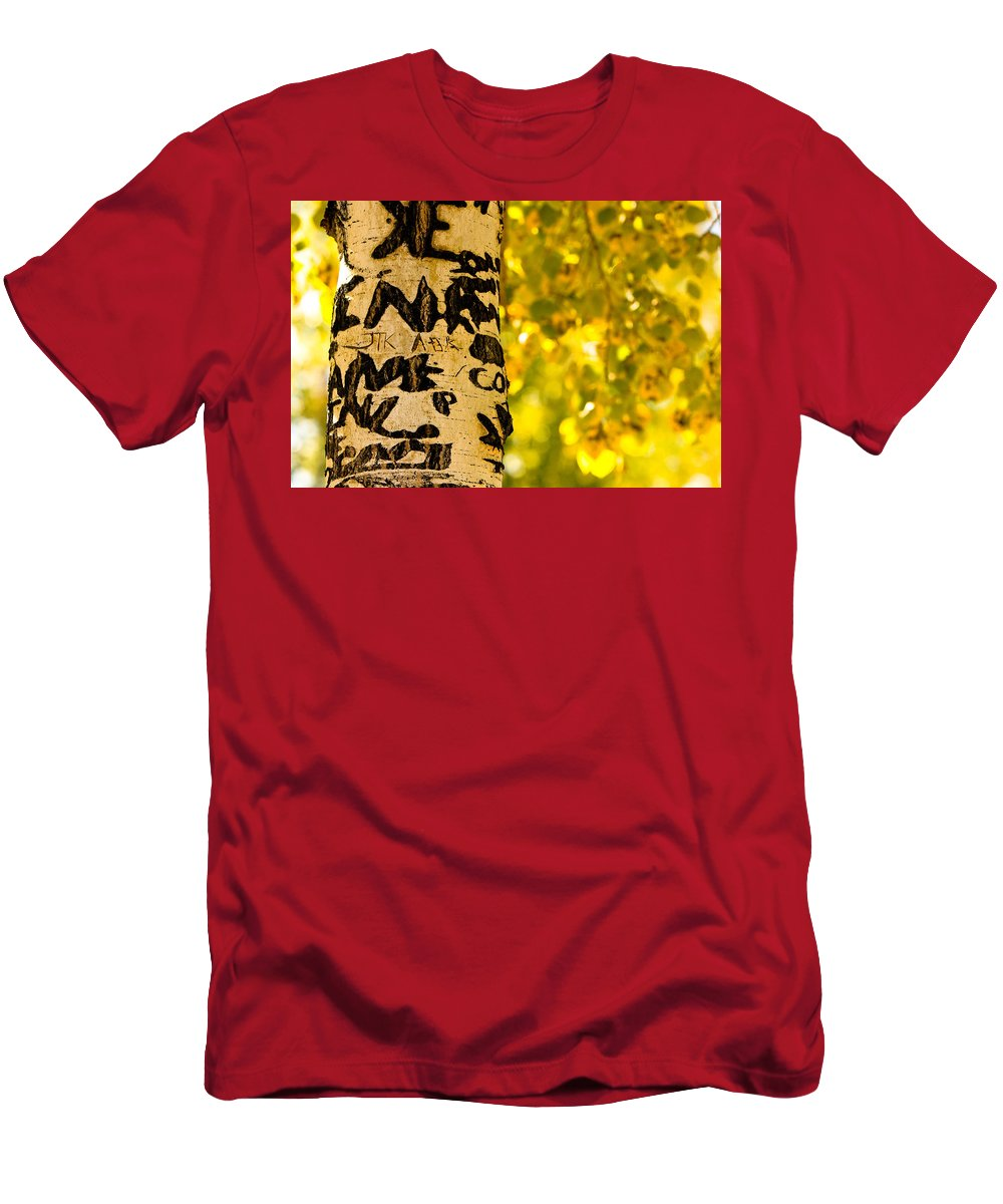 Aspens Men's T-Shirt (Athletic Fit) featuring the photograph Autumn Carvings by James BO Insogna