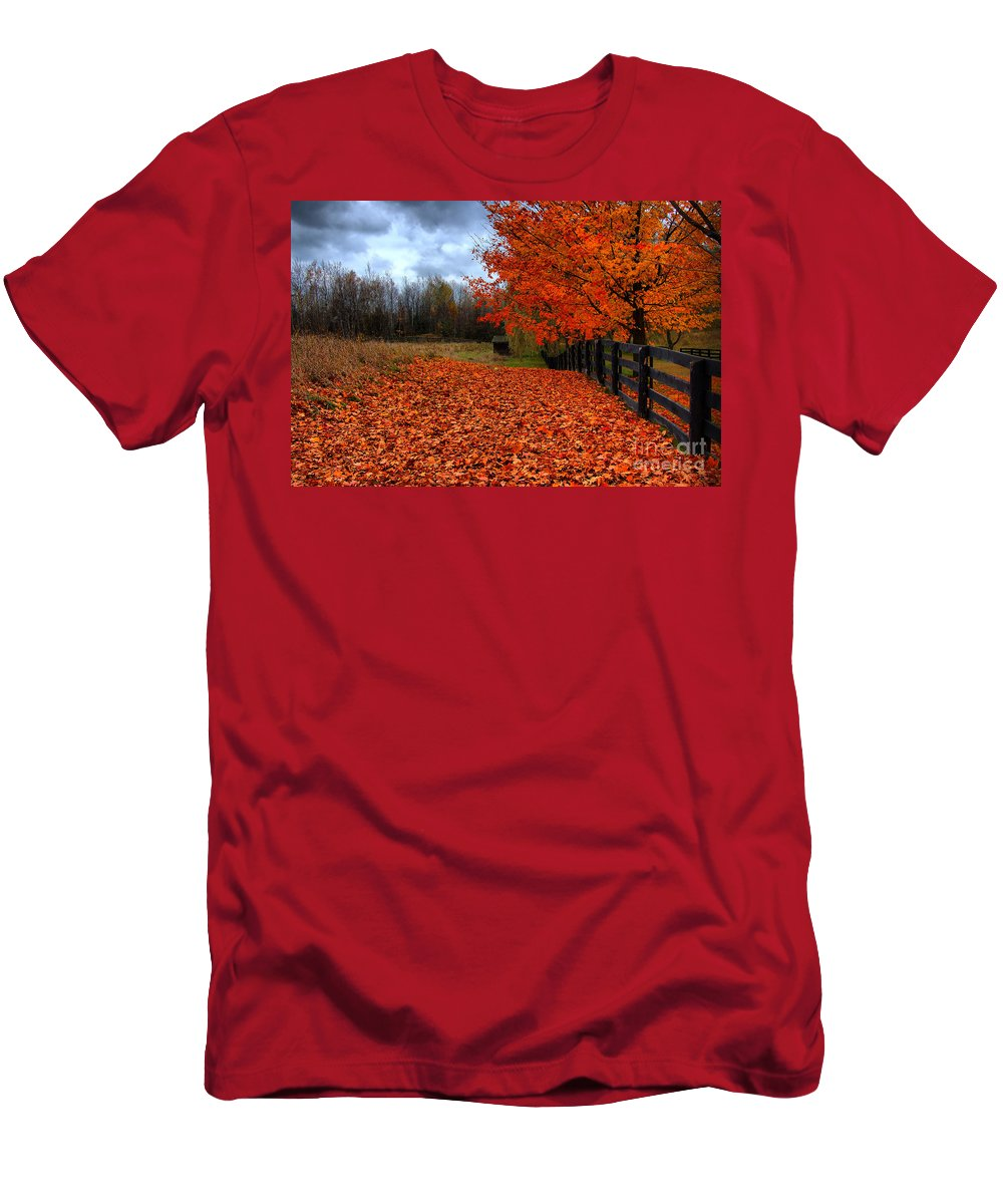 Autumn Men's T-Shirt (Athletic Fit) featuring the photograph Autumn Leaves by Joe Ng