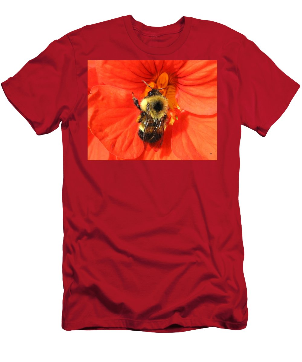 Bee Men's T-Shirt (Athletic Fit) featuring the photograph Bee And Nasturtium by Will Borden