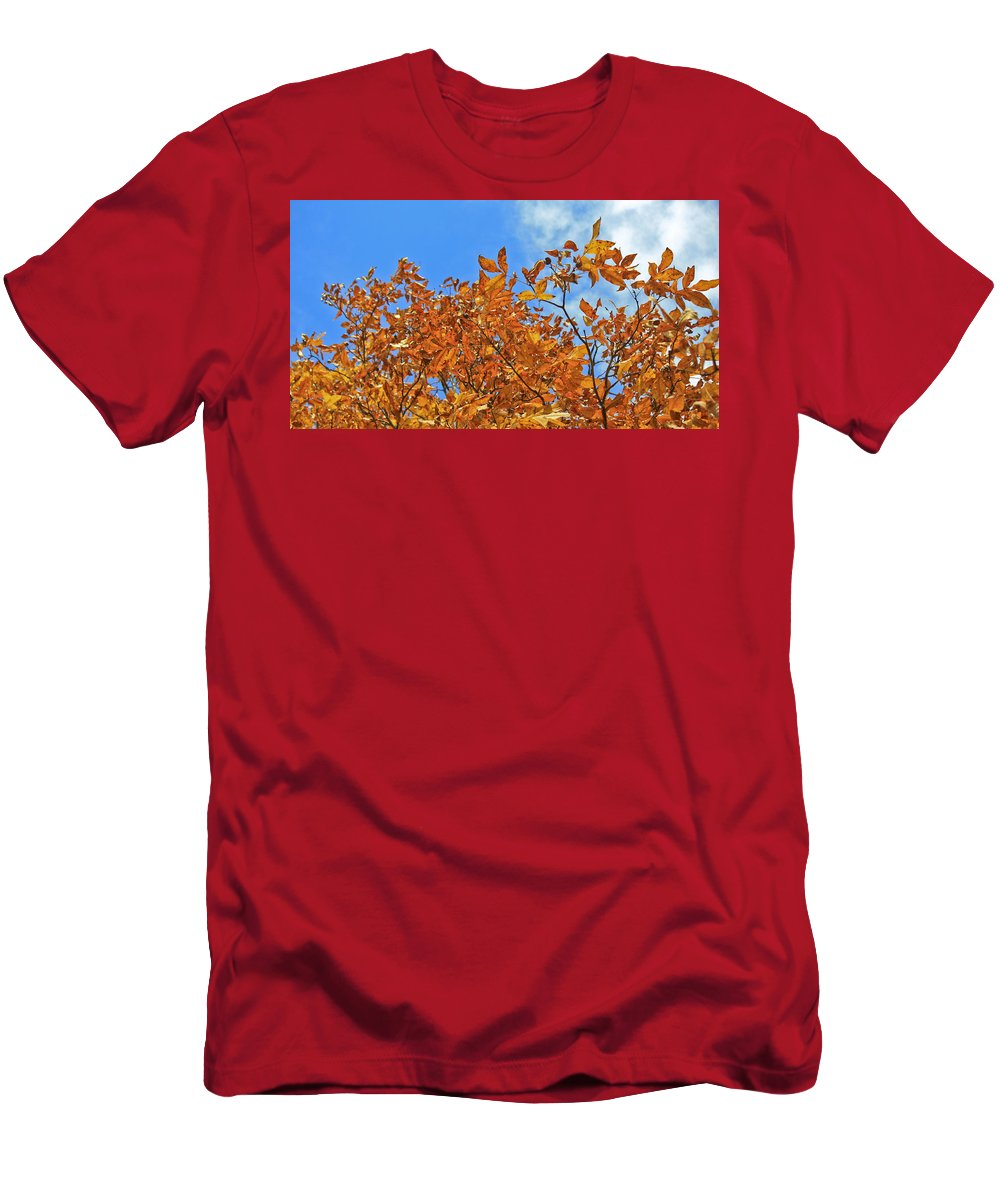 Fall Men's T-Shirt (Athletic Fit) featuring the photograph Blue Sky by Teresa Mucha