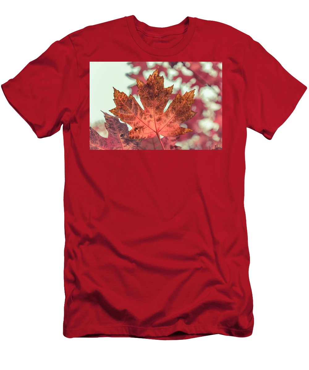 Leaf Men's T-Shirt (Athletic Fit) featuring the photograph Burns Red by Eduardo Gil