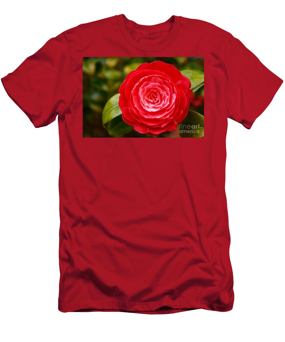 Azores Men's T-Shirt (Athletic Fit) featuring the photograph Camellia Japonica by Gaspar Avila