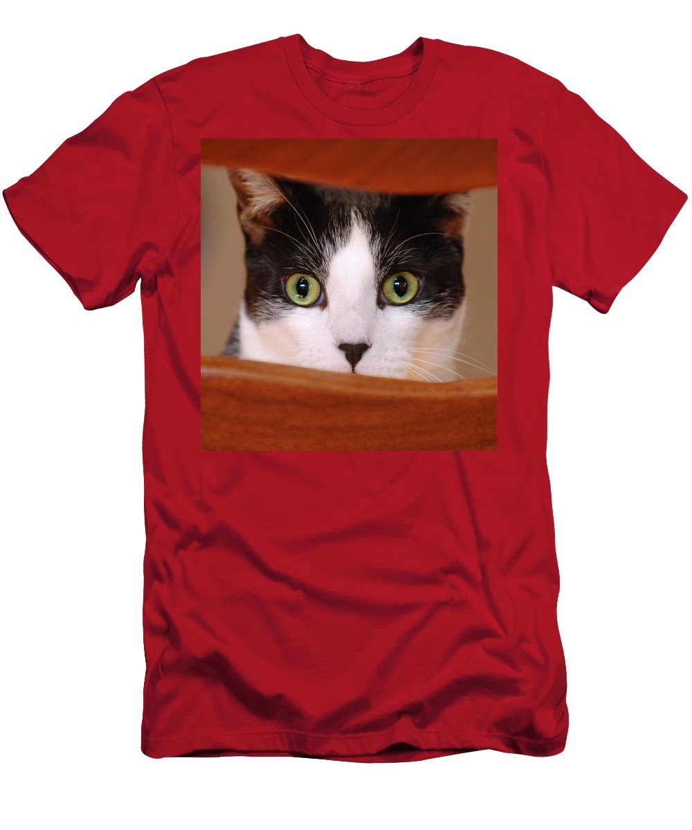 Pet Men's T-Shirt (Athletic Fit) featuring the photograph Cat Eyes by Jill Reger