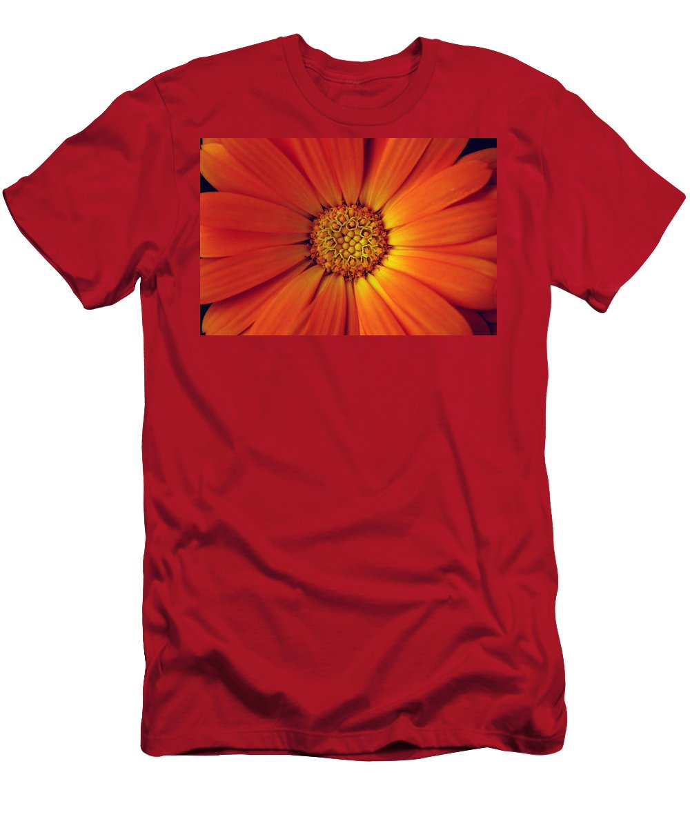Plant Men's T-Shirt (Athletic Fit) featuring the photograph Close Up Of An Orange Daisy by Ralph A Ledergerber-Photography