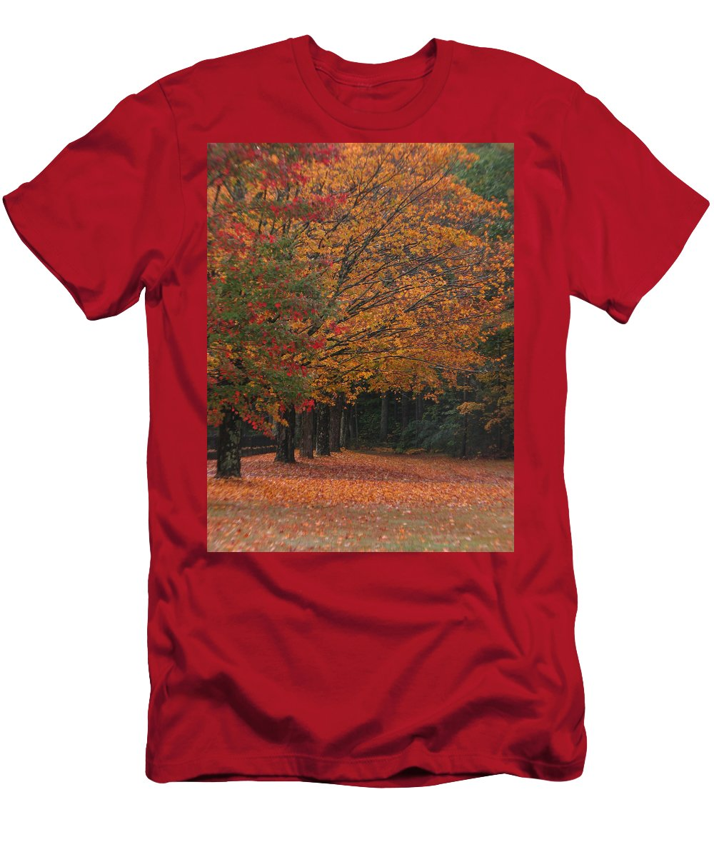 Fall Trees Men's T-Shirt (Athletic Fit) featuring the photograph Colorful Trees by Michael Mooney