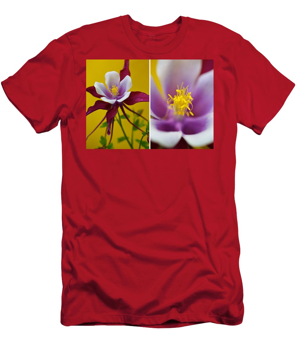 Columbine Men's T-Shirt (Athletic Fit) featuring the photograph Colourful Colombine by Lisa Knechtel