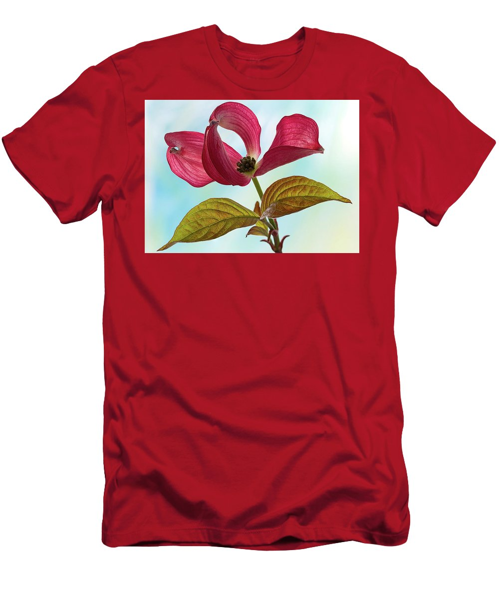 Floral Men's T-Shirt (Athletic Fit) featuring the photograph Dogwood Ballet 4 by Shirley Mitchell