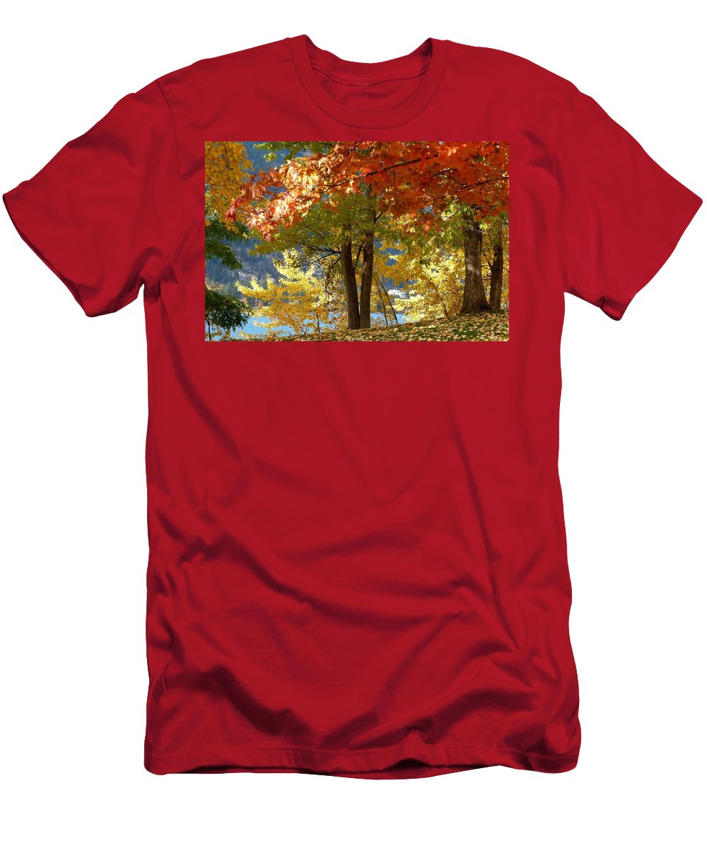 Kaloya Park Men's T-Shirt (Athletic Fit) featuring the photograph Fall In Kaloya Park 4 by Will Borden
