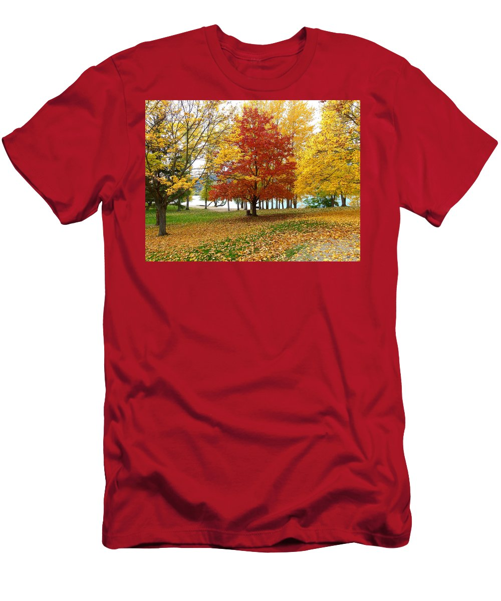 Kaloya Park Men's T-Shirt (Athletic Fit) featuring the photograph Fall In Kaloya Park 5 by Will Borden