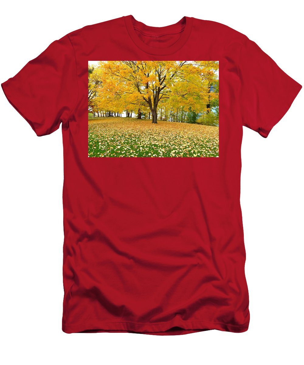 Kaloya Park Men's T-Shirt (Athletic Fit) featuring the photograph Fall In Kaloya Park 7 by Will Borden