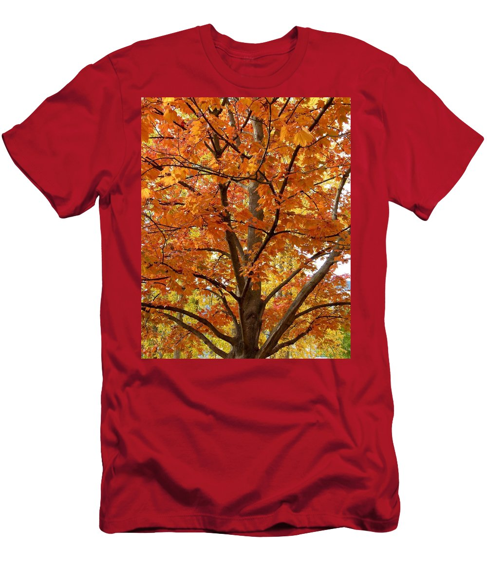 Kaloya Park Men's T-Shirt (Athletic Fit) featuring the photograph Fall In Kayloya Park 2 by Will Borden