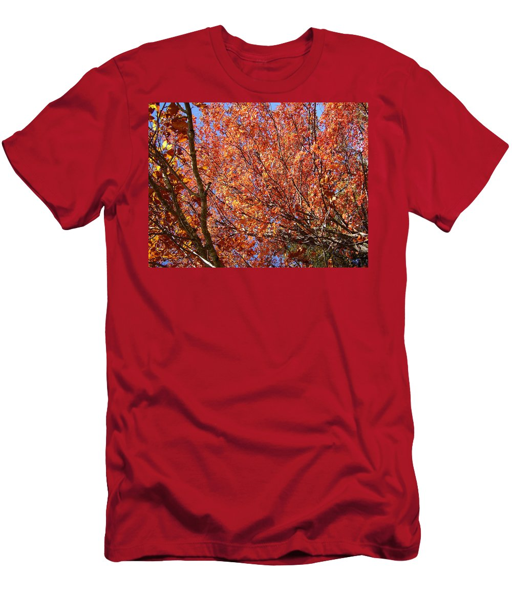 Fall Men's T-Shirt (Athletic Fit) featuring the photograph Fall In The Blue Ridge Mountains by Flavia Westerwelle