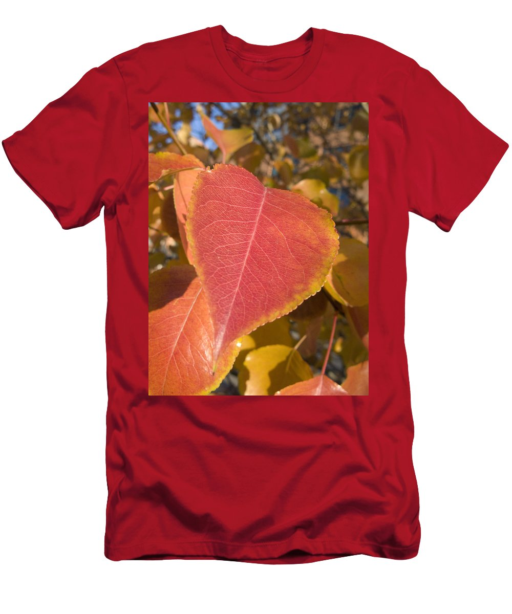 Landscape Men's T-Shirt (Athletic Fit) featuring the photograph Fall by Jeffery Ball