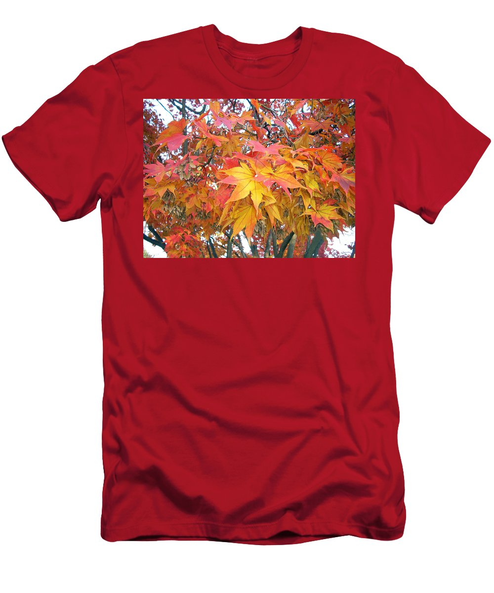 Fall Pictures Autumn Pictures Fall Leaves Painting Yellow Paintings Fall Colors Painting Greeting Card Painting Seasonal Painting Seasons Painting Botanical Painting Tree Painting Men's T-Shirt (Athletic Fit) featuring the photograph Fantasy Of Fall by Karin Dawn Kelshall- Best