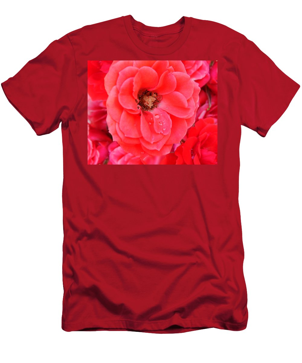 Roses Men's T-Shirt (Athletic Fit) featuring the photograph Full Bloom by Anthony Jones